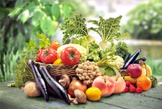 乾燥試験 農産品