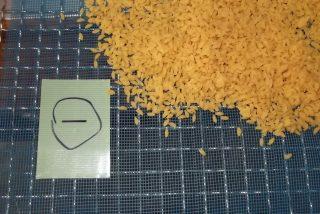 農産加工品 機能性食品 グルテンフリー 大豆米の低温乾燥テスト