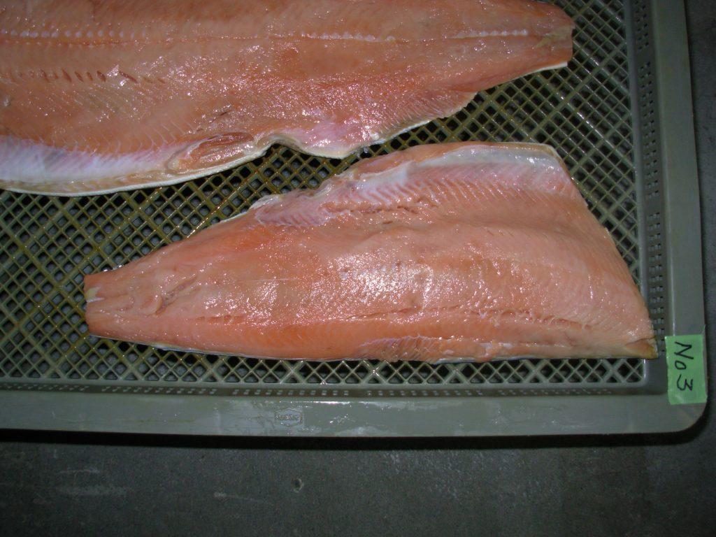 水産品 珍味 鮭とば低温乾燥テスト