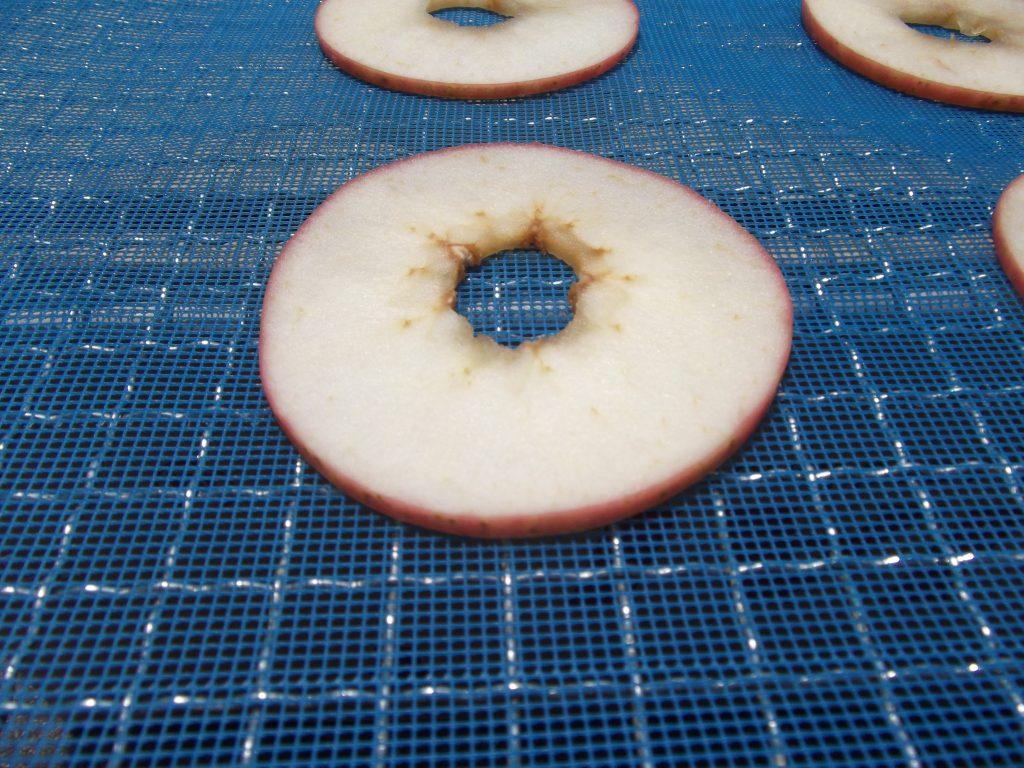 農産品 リンゴチップス低温乾燥テスト