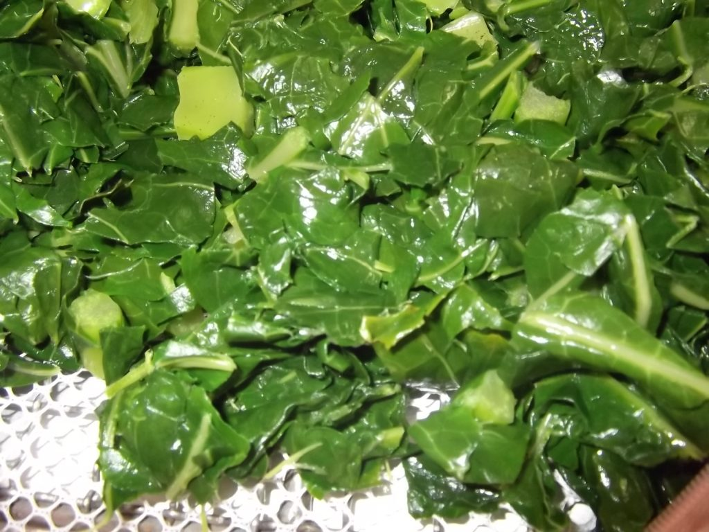 農産品 青汁用ケールの乾燥テスト